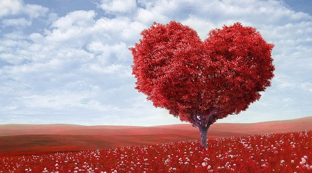 hart onder de riem voor stiefmoeders